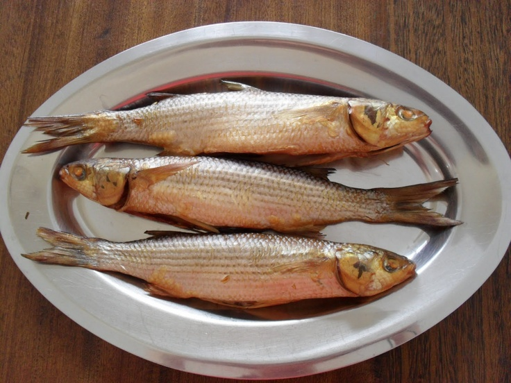 1000 images about nc seafood recipes on pinterest black for Mullet fish recipe
