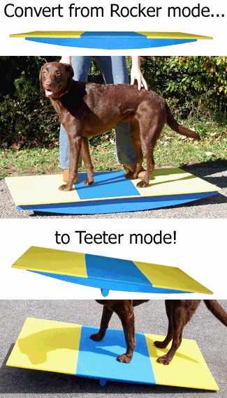 Dog Rocker Board Teeter Trainer (part Buja Board or Wobble Board) by Affordable Agility