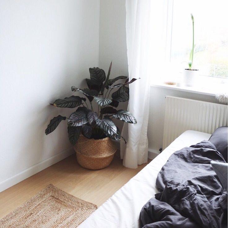 Katrine Ibsgaard (@katrine.ibsgaard) • Instagram-billeder og -videoer