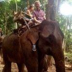Riding an elephant in Asia! #travel #contiki
