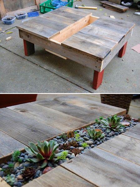 DIY-succulent-table.jpg 448×600 pixels