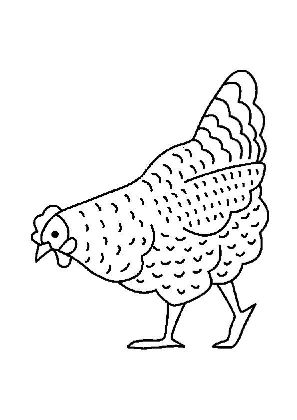 Dessin à colorier d'une poule entrain de chercher à manger