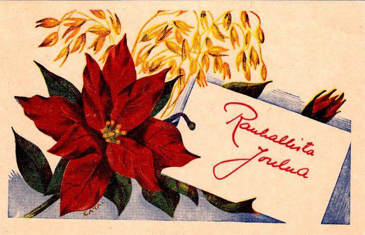 CARITA (FALIN) RODEN - 106951943635258866150 - Picasa-verkkoalbumit