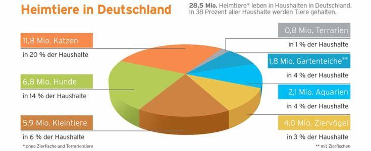 Heimtiere in Deutschland 2014: In 38 Prozent aller Haushalte in Deutschland werden Heimtiere gehalten. Bild: ZZF/IVH