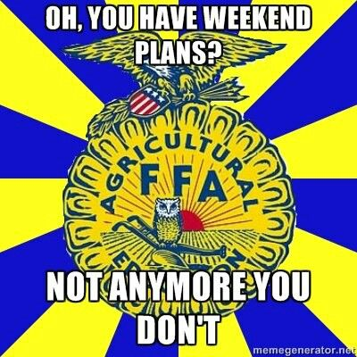 This is totally true but FFA is worth it!! (: