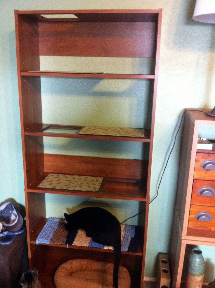 Cat shelf (With images) Cat shelves, Diy cat tree, Cat