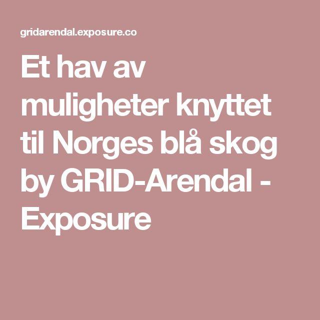 Et hav av muligheter knyttet til Norges blå skog by GRID-Arendal - Exposure