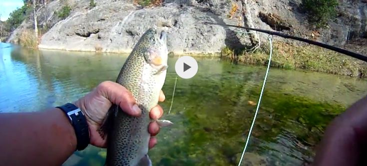 Made the run across the border to Oklahoma's Turner Falls Park for some fly fishing. Recently stocked with rainbow trout, was able to get a limit Friday. Hope to try again Saturday for more fun fishing the river! Will post a video of the trip later. For now, here is a video snippet of the...  [read more]