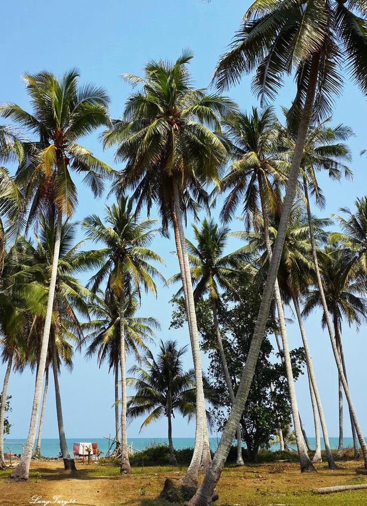 Beach in Bang Nam Jued,Lang Suan
