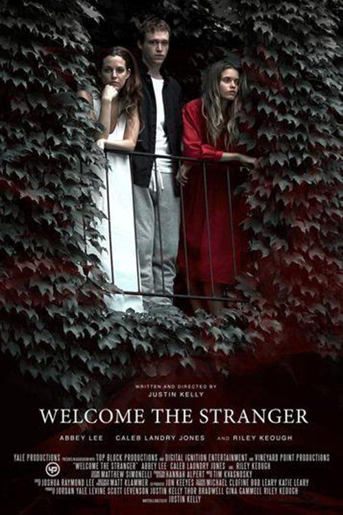 Watch Welcome the Stranger (2017) Full Movie Online Free