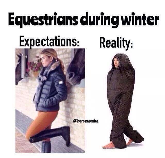 Znalezione obrazy dla zapytania winter girl equestrian