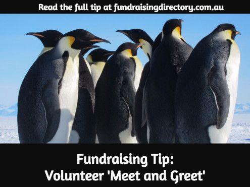 best fundraising tips