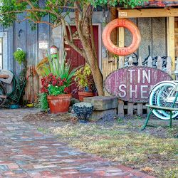 Tin Shed's profile photo Apalachicola