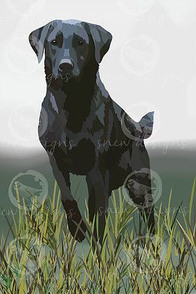 Black Labrador snewdesigns