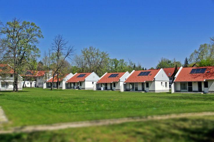 Hungary, Harkány, Termál Kemping Apartmanházak**** http://relaxino.com/hr/madarska-harkany-termal-kemping-apartmanhazak