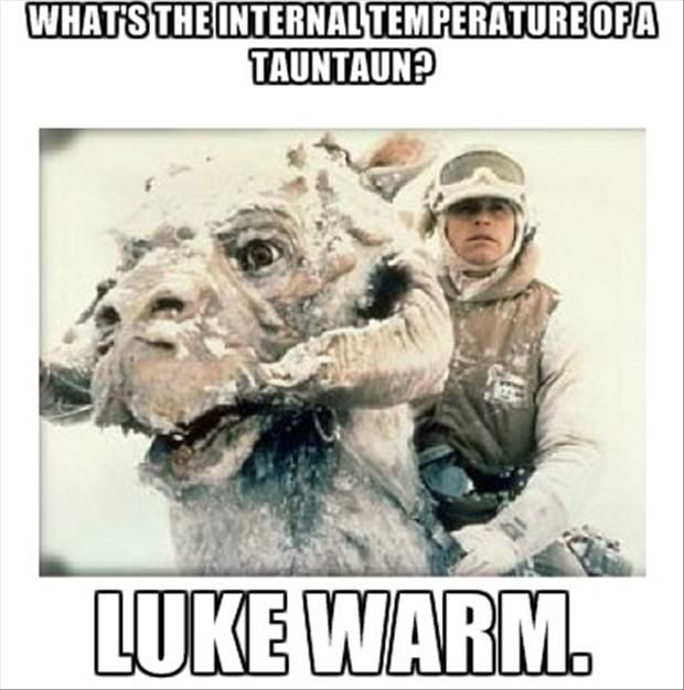 *snicker* you have to know Star Wars to get it...
