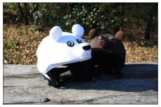 Bears helmet covers