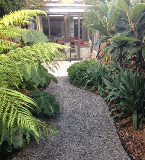 A garden planted by Architectural Plants, maturing really well.