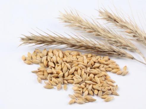 Pour transformer une recette de gâteau en version sans gluten, remplacer la farine de blé par 3/4 de farine de riz complète 1/4 de fécule de maïs