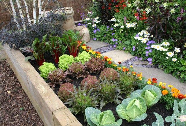Aksamitki Jednoroczne Kwiaty Nie Tylko Dla Poczatkujacych Ogrodnikow Naogrodowej Pl Gartenprojekte Garten Garten Ideen