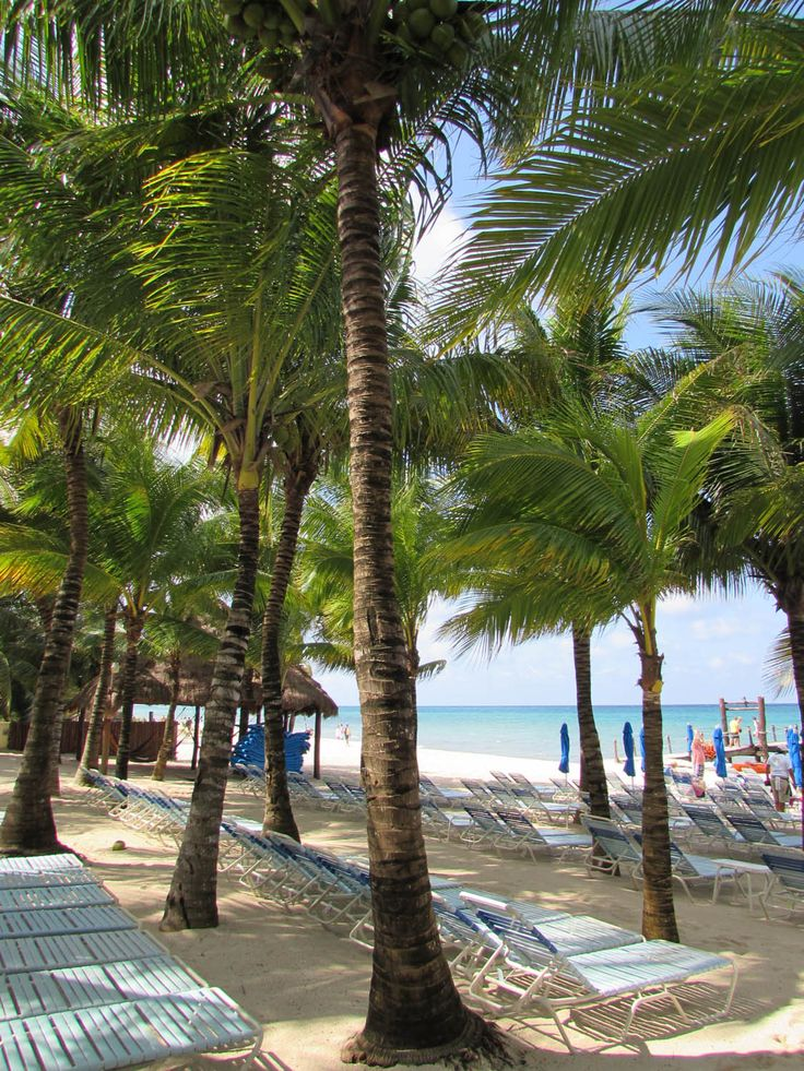 Paradise Beach, Cozumel - a 10 minute cab ride from port,  $3. for a lounge chair with a  $10. required minimum for food.