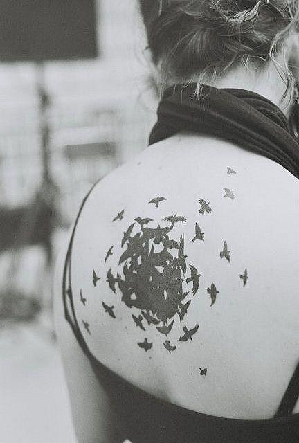 Les oiseaux. Cauchemar préféré.
