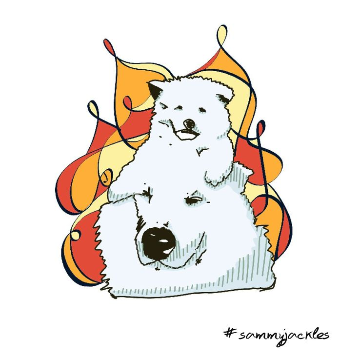Vector dog art.  #sammyjackles #doggies #adorable #dogs #vector #vectorart #dogvector