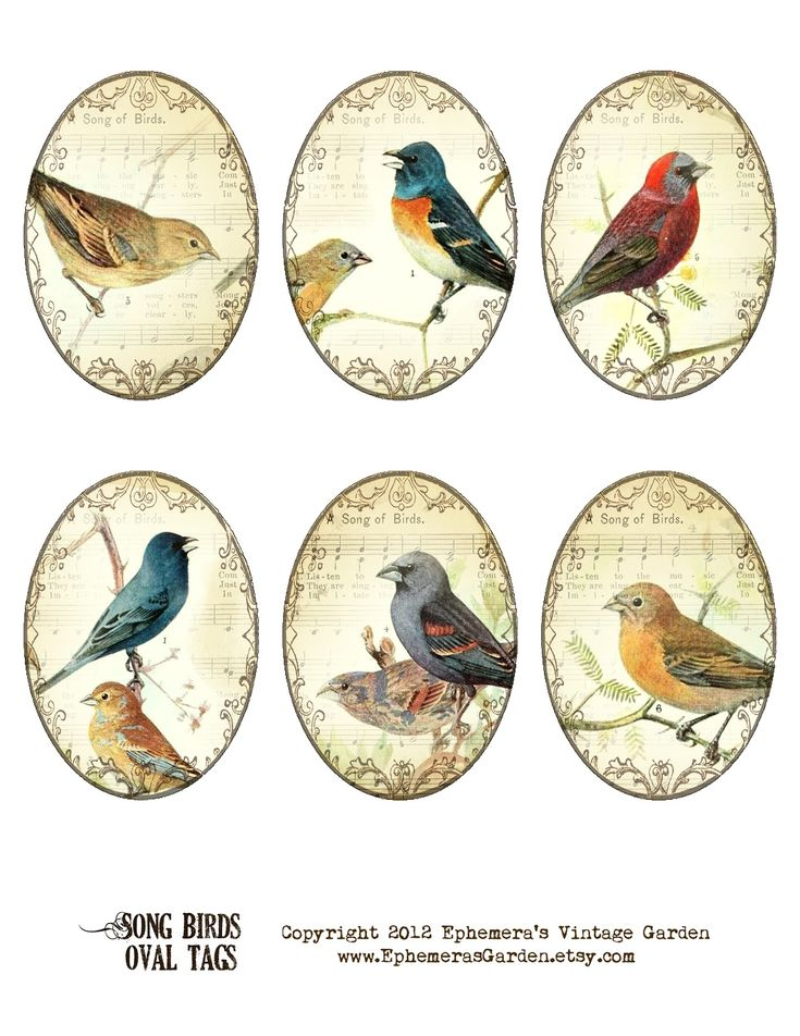 Ephemera's Vintage Garden: Weekly Freebie: Oval Songbird Tags