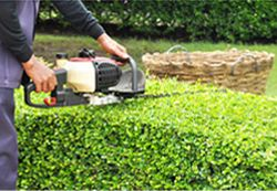 We pride ourselves in offering quality, professional, and dependable lawn mowing Dural, Schofields and The Ponds area.