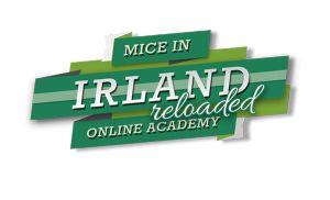 Irland Online Academy für Veranstaltungsplaner – Reloaded! - MICE Newsroom Irland