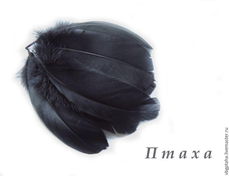 Купить Перья гуся черные - черный, перья, перья птиц, перья черные, Перо натуральное