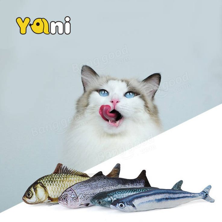 Yani 30cm Large Size  Interactive Pets Pillow Catnip Toys Simulation Plush Fish Shape Doll Chew Bite Cat Toy