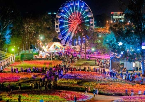 Floriade NightFest - Canberra - Australia: National Capitals, Floriad Canberra, Call Australia, Capitals Cities, Night Canberra, Floriad Nightfest, Australia Capitals, Awesome Australia, Canberra Australia