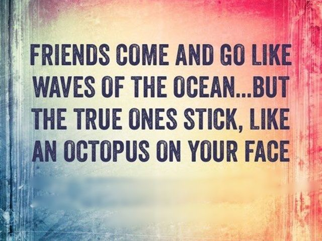 Quotes About Close Friendship Bonds Brilliant Best 25 Great Friends Quotes Ideas On Pinterest  Great