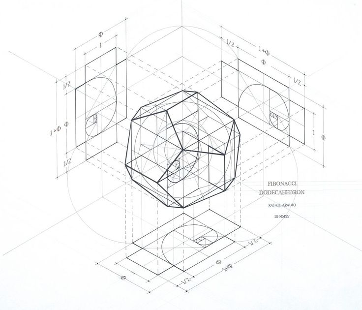 Fibonacci Dodecahedron | Walter Magazine | We All Live To Enhance Reality