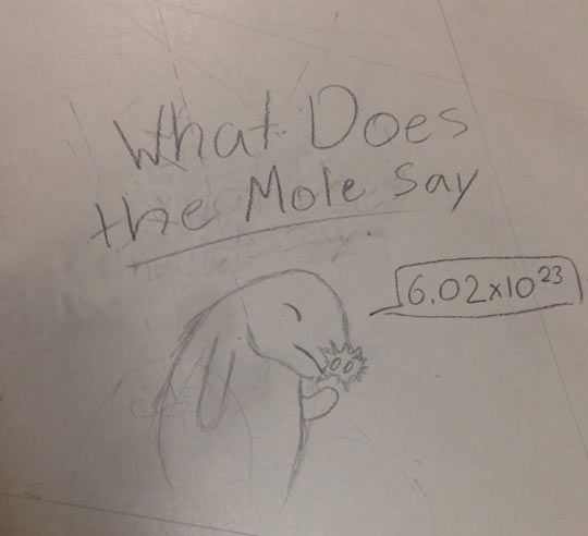 funny-desk-mole-say-chemistry