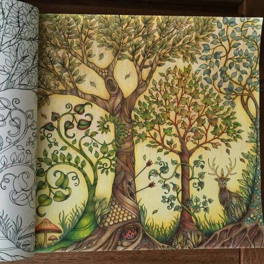 373 Best Images About Johanna Basford Enchanted Forest On Pinterest