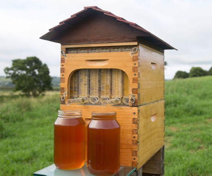 Automatic Honey Collecting Beehive | Bee keeping, Backyard ...