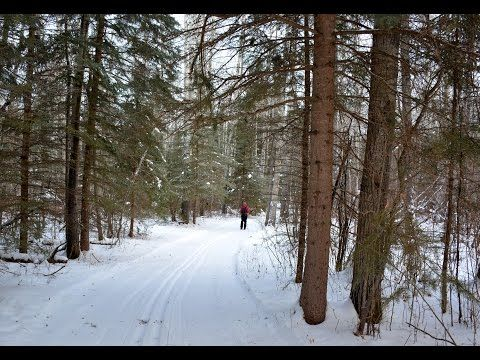 Our travel bloggers find out about all the fun things to do in Meadow Lake Provincial Park in the winter.