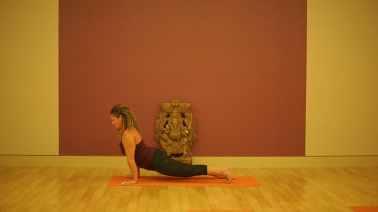 A lesson on Chaturanga Dandasana at Pure Yoga West
