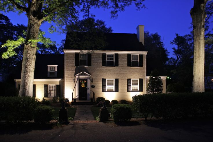 Unexpected Landscape Lighting Features that Will Wow Your Guests