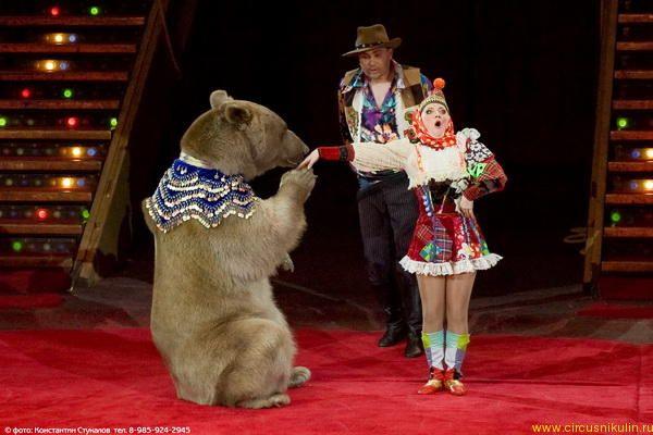 http://www.circusnikulin.ru/gallery/48/011.jpg