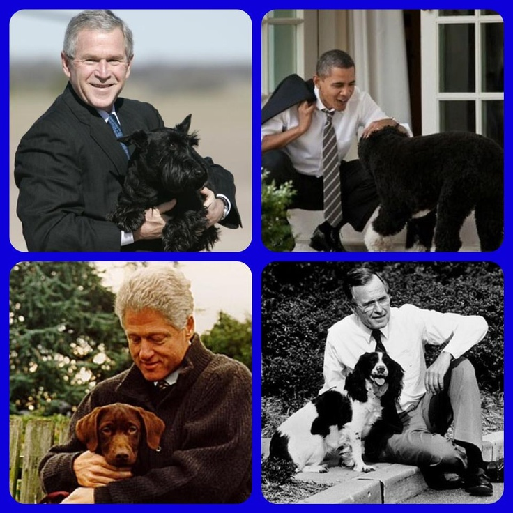 Presidents and their Pets Doggielicious Pinterest