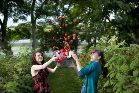 Berries in a pan doon the dreel! Copyright Keathbank Media 2012