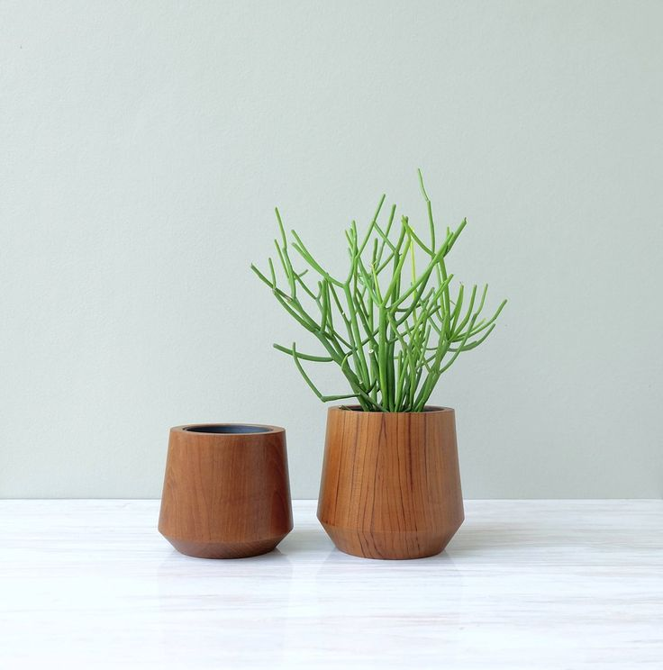 Large And Extra Large Teak Wood Planters For Home Office 400 x 300