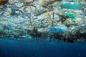 Pencemaran laut, ilustari. (sumber: bagmonster)
