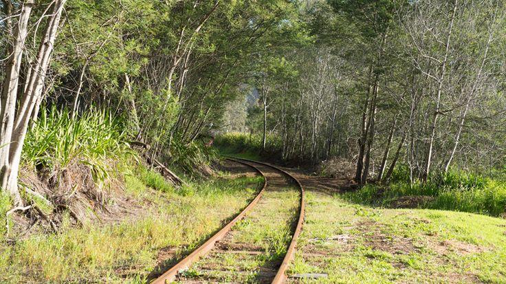 Old timber railway in Pemberton
