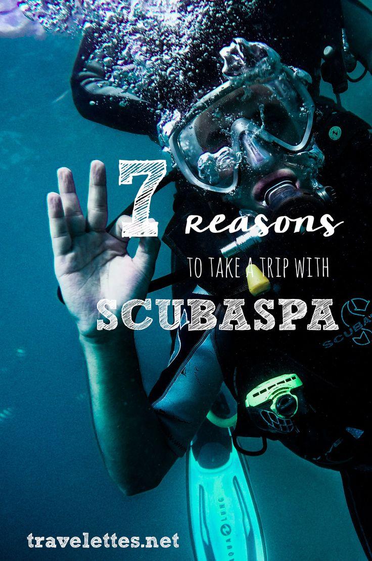 Travelettes » » 7 Reasons to take a trip with Scubaspa (scheduled via http://www.tailwindapp.com?utm_source=pinterest&utm_medium=twpin)