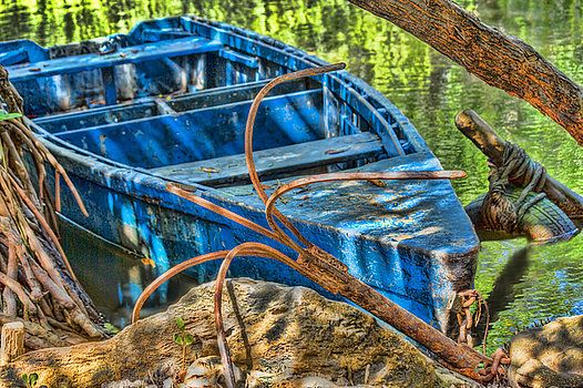 Blue wooden fishing boat anchored  in the caroni swamp in the island of Trinidad in  the Caribbean