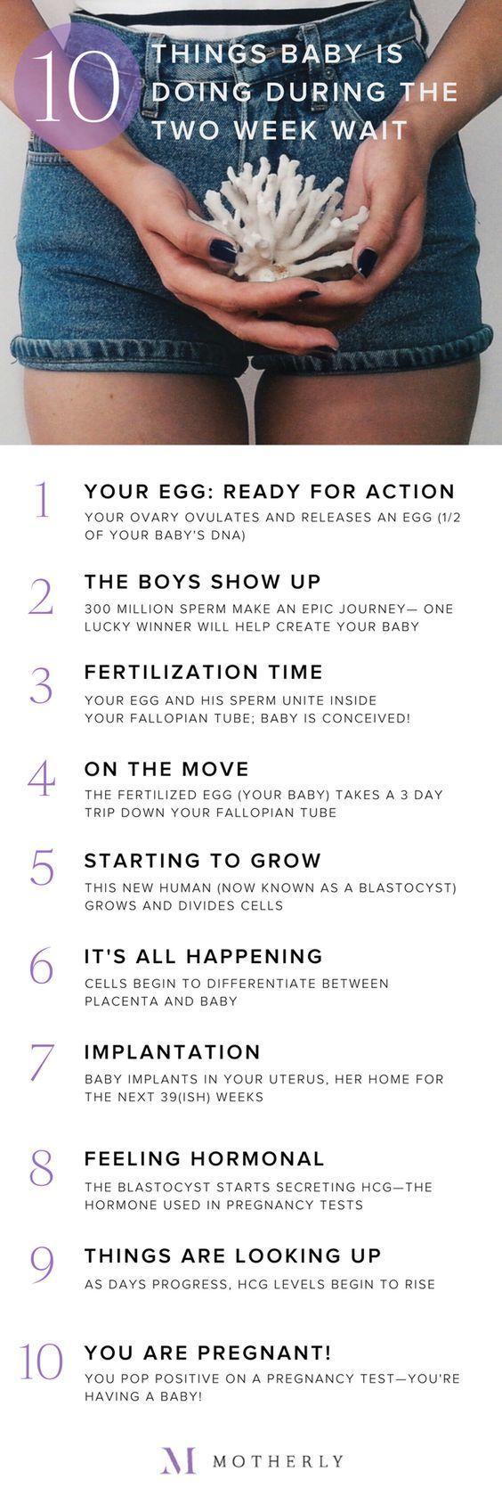#ttc #fertility